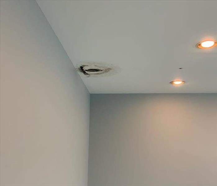 image of the ceiling of a commercial building with visible water damage from a leak