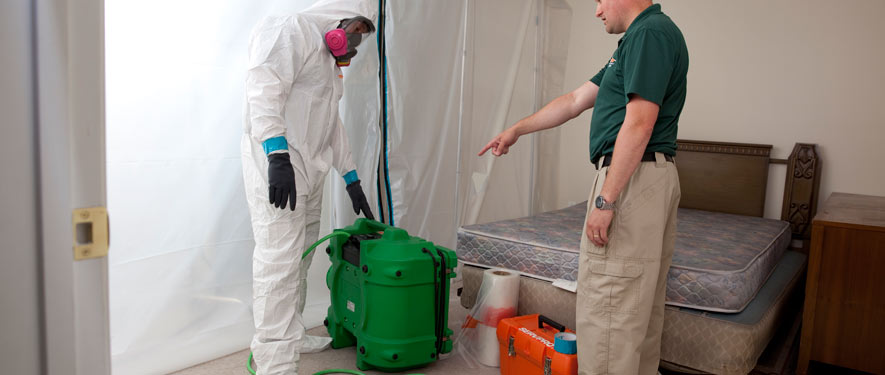 Erie, PA mold removal process